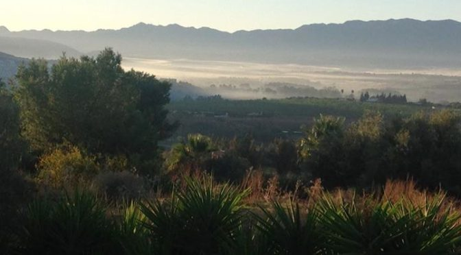 Autumn is on its way here at Casa Sampo with early morning dew and mist, still l…